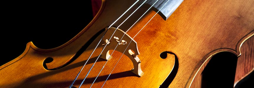 violoncello_wide